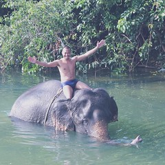 Real life elephant #charm. Bathing and feeding my pet after strolling #kochang #thailand #travel
