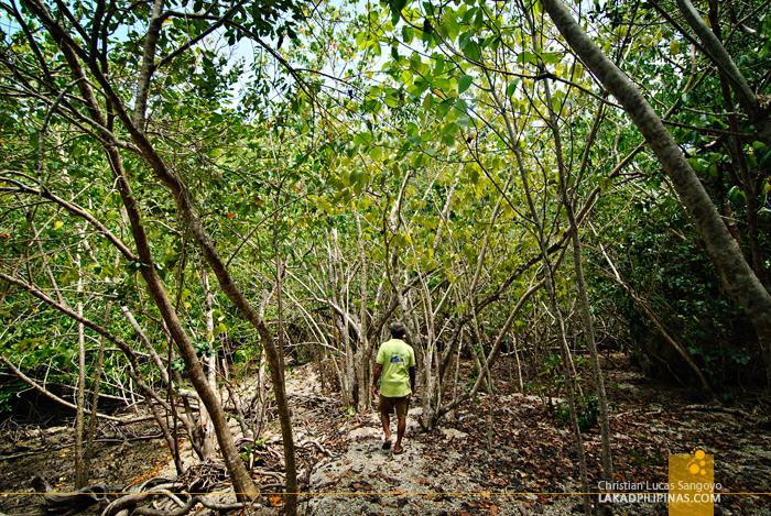 Lamanoc Island in Anda, Bohol