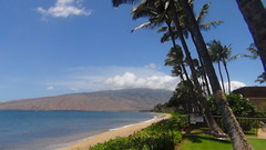 Kihei Oceanfront Homes