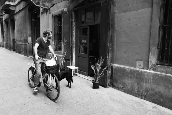 Barcelona_Spiegeleule_2014August 033