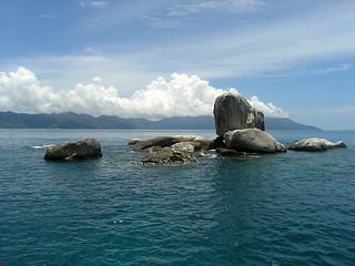 "<img src=""padi-diving-on-tioman-island-malaysia.jpg"" alt=""PADI Diving on Tioman Island, Malaysia"" />"