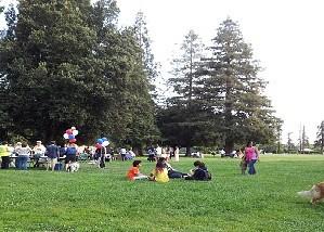 Hamann Park