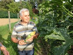 Domenico con una bella zucchina di sua produzione
