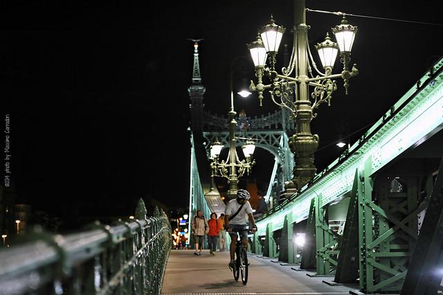 Ponte delle Libertà (Szabadság híd) Budapest