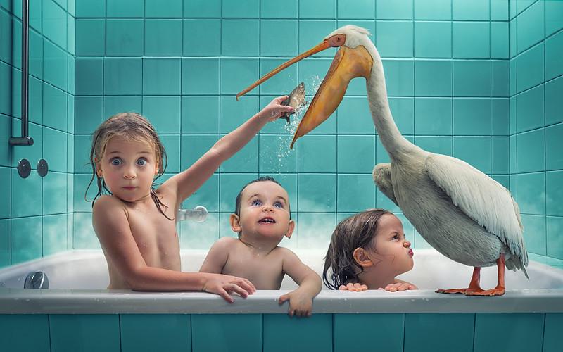 Feeding a stinky pelican
