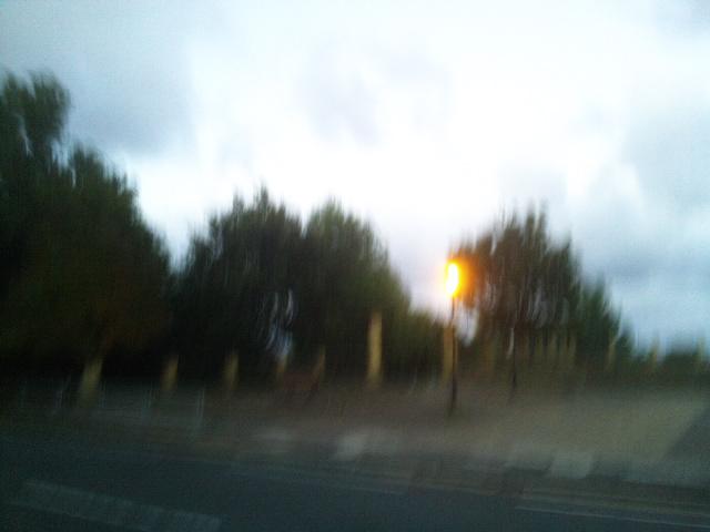 PIC_5365