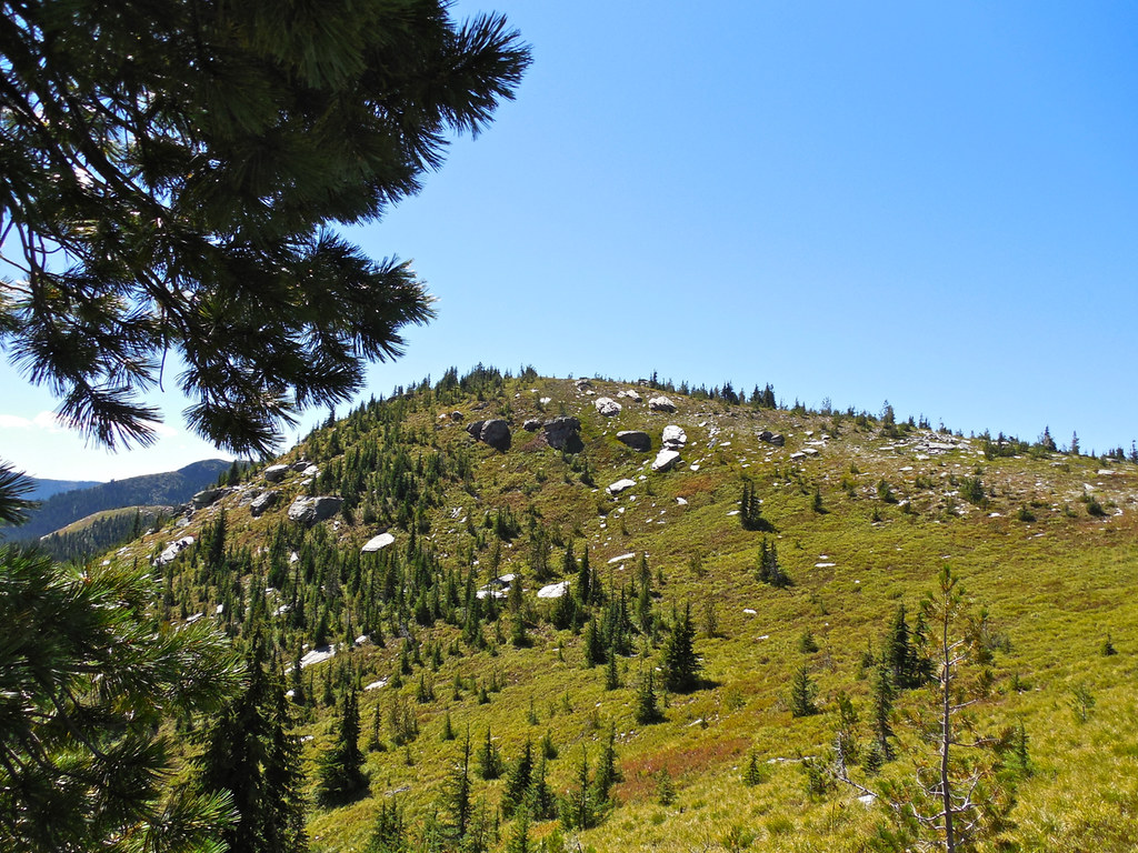 Trail 63: Cabinet Mountains Wilderness