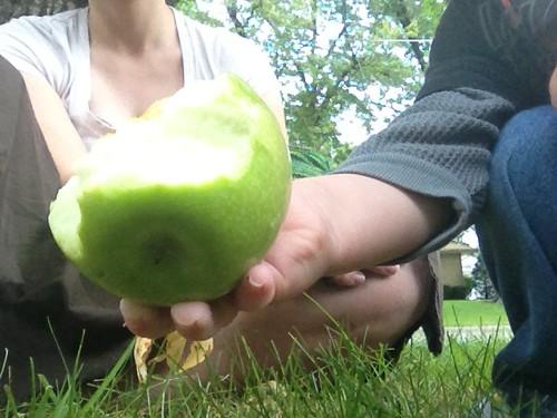 L's Apple