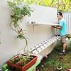 Project Hydroponic Lanjutan #hydroponic #berkebun #dirumah #diy