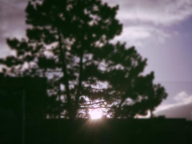 Rising Light - Danielle, Canon IXUS 175