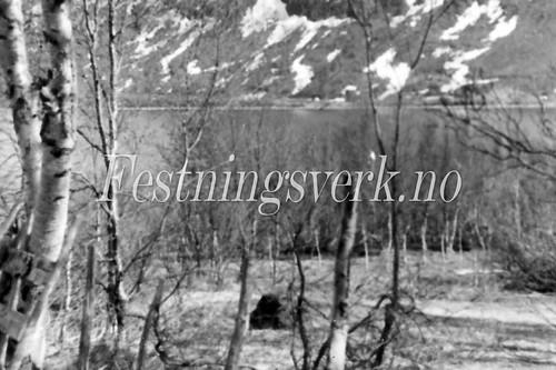 Finnmark 1940-1945 (396)