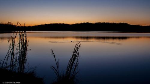 blue grass sunrise spring unitedstates salmon maryland calm hills boyd loon senecalake boyds