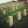 Earlier today, flag planting at the San Francisco National Cemetery