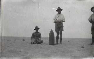 A shell, Egypt