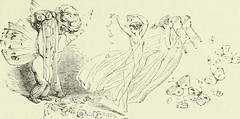 """Image from page 288 of """"Midsummer Eve : a fairy tale of loving and being loved"""" (1870)"""