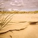 Sand formations by Signed_off_M