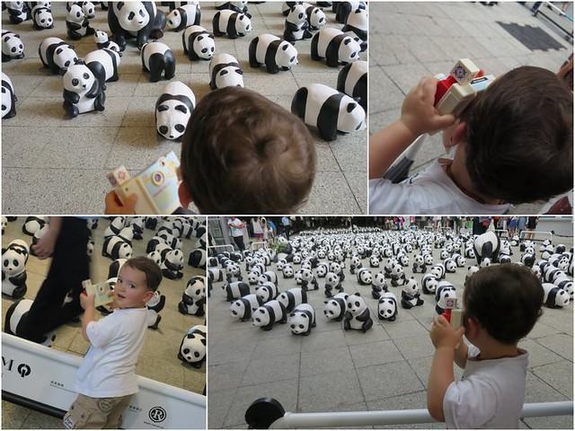 1600 pandas3
