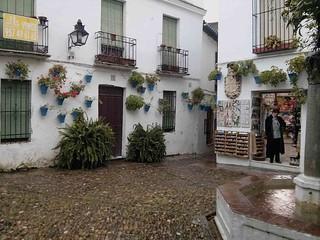 Bilde av Calleja de las Flores. andalucía spain