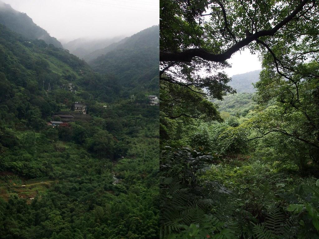 luontoa1