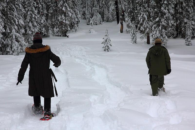 IMG_8416 Ranger-Led Snowshoe Walk