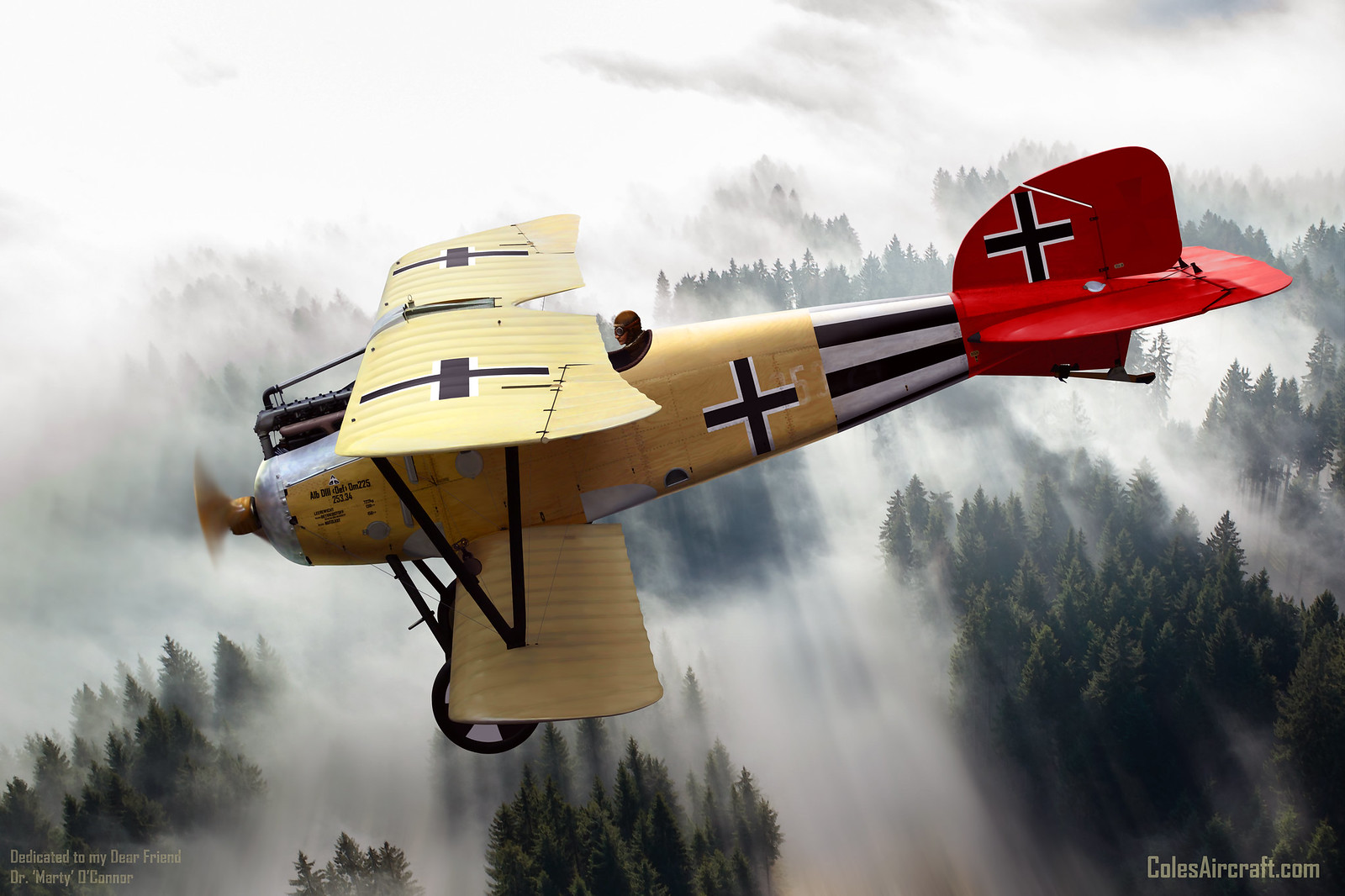 рисунок Albatros D.III Oeffag 253