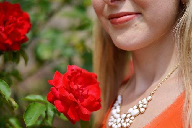 Like roses (7)