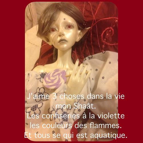 [ famille Mortemiamor ] tranches de vie - Page 68 14870520028_dfd79d2326