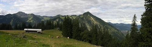 Bodenalm-Panorama