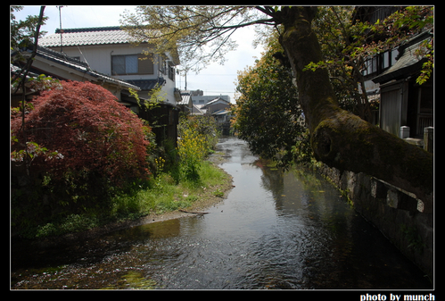 流經屋後的圳道。圖片來源:munch