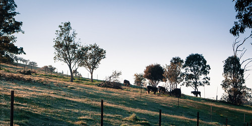 australia victoria buchan snowymountains countryvictoria buchanvalley