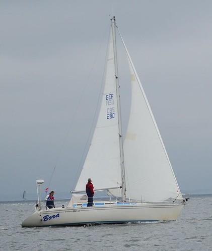DSC_6628-Bora