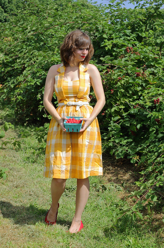yellow gingham dress, gingham halter dress, modcloth dress, yellow modcloth dress, checkered dress, raspberry picking, german dress, grand canyon finale dress