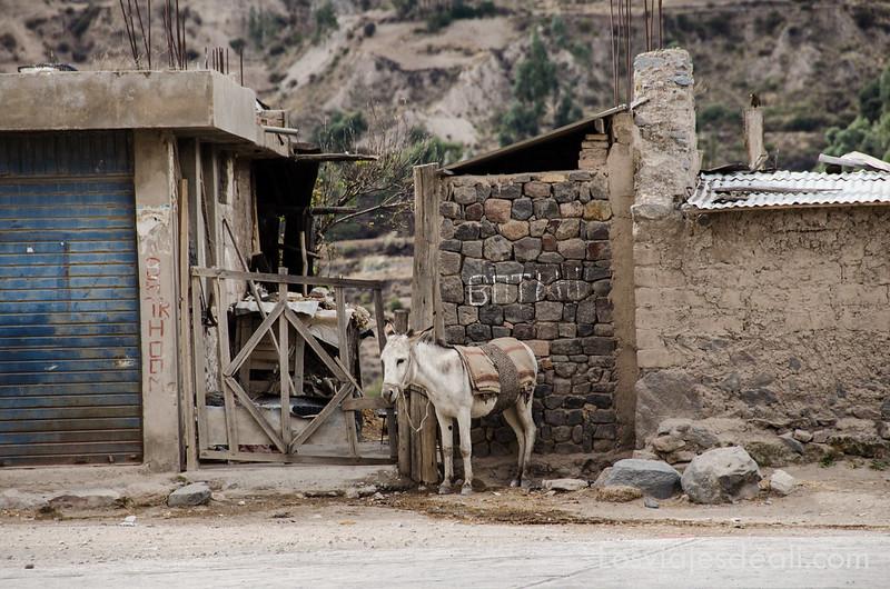 Perú-576