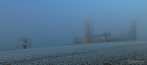 Ferme et brouillard (Switzerland)