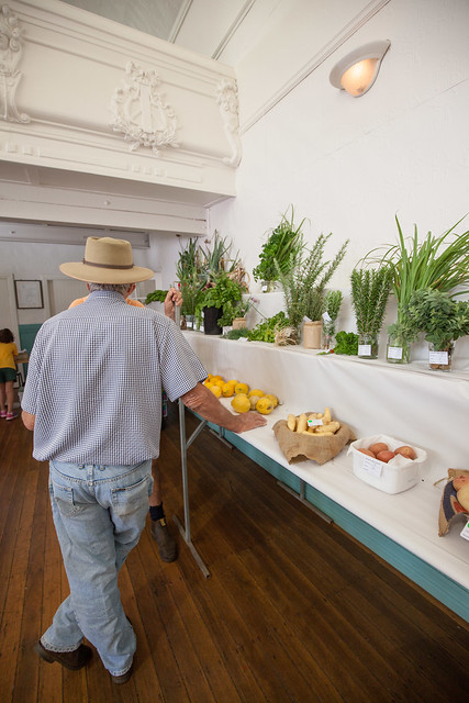 Bangalow Country Show 2016 - Judging
