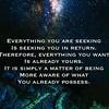 Everything you are seeking is seeking you in return #inspired #seeker