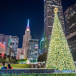 Dallas Christmas 2016 - Main St. Garden