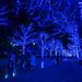 Paradise of Blue Lights by Yakinik