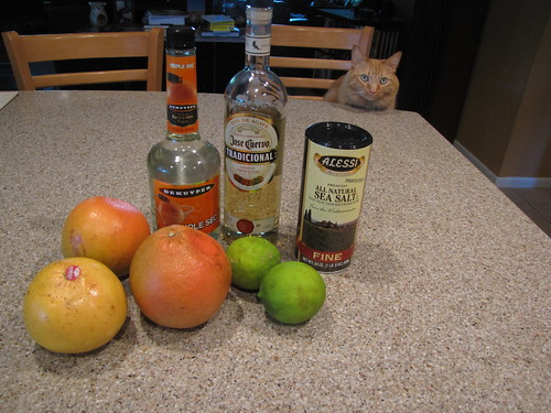 Grapefruit Margarita Ingredients