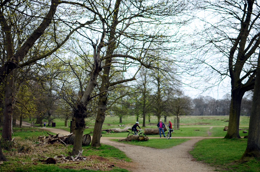 richmond park bikes