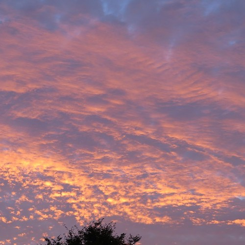 As I was cleaning up the kitchen I noticed a glow outside. The sky was gorgeous. After a few days of gray & gloom this was a wonderful way to end the day #gratitude