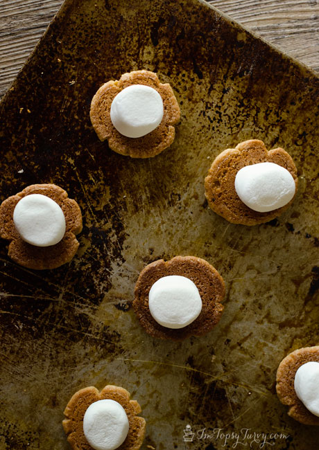 peanut-butter-cookie-marshmallows