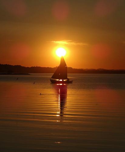 sunset sun silhouette top flare sail sjægt