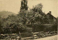 """Image from page 22 of """"New England; a human interest geographical reader"""" (1917)"""
