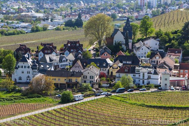 Rheingau Wine Region Germany-14