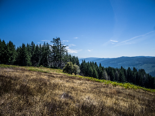 Dolason Prairie at Redwoods National Park
