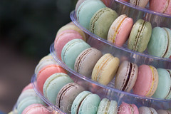 hand(0.0), cake(0.0), finger(0.0), easter egg(0.0), easter(0.0), nail(0.0), sweetness(1.0), food(1.0), macaroon(1.0), close-up(1.0), dessert(1.0), pink(1.0),