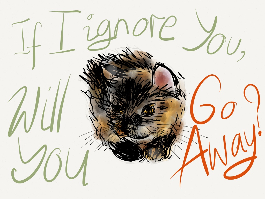 """Our cat Raisin drawn with the """"Paper"""" app 4"""