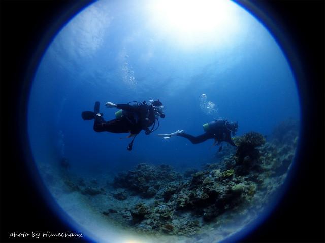 ブーンっととっても楽しそうに泳ぐNさんw 無事にOWダイバー認定です!