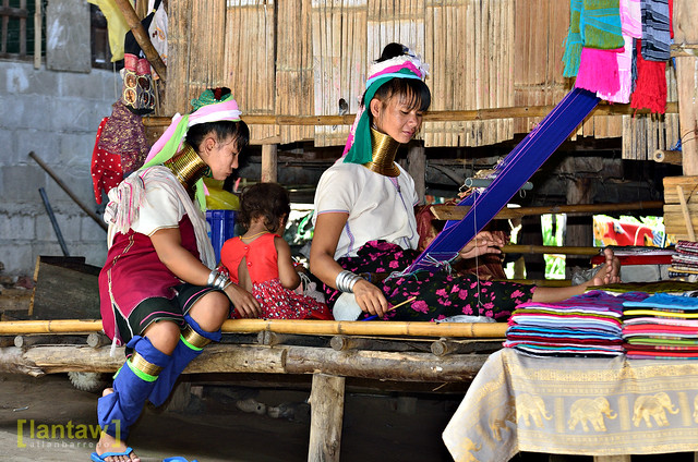 Kayan weaver